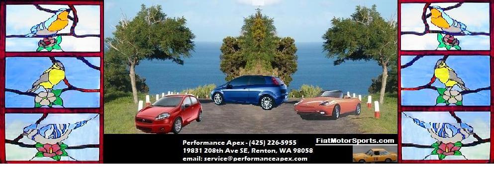 FiatMotorSports.com